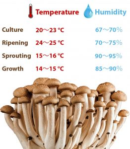 humidity for mushroom