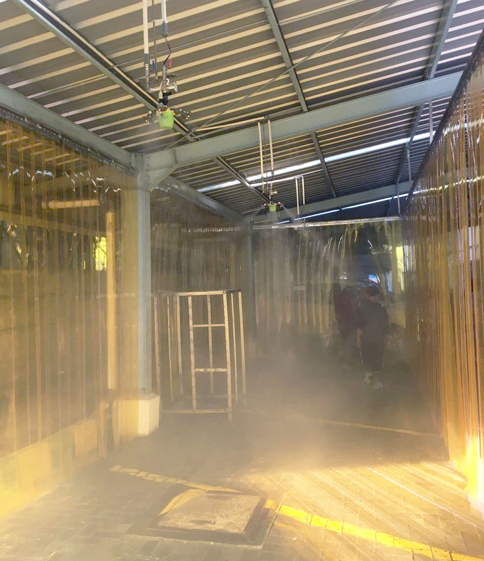 disinfection of facilities
