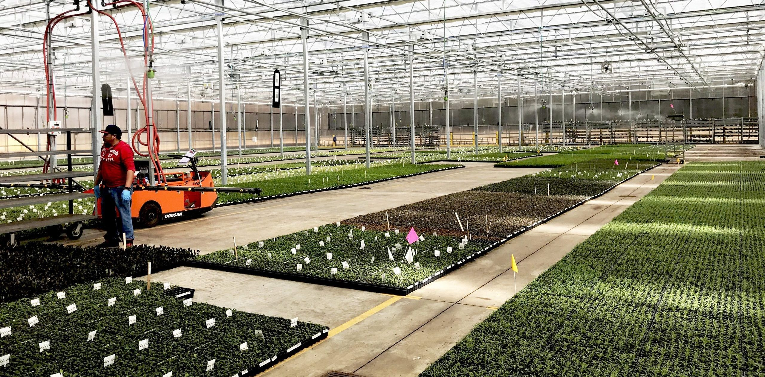 """Walters Gardens greenhouse with AKIMist®""""E"""" Dry Fog humidifier"""