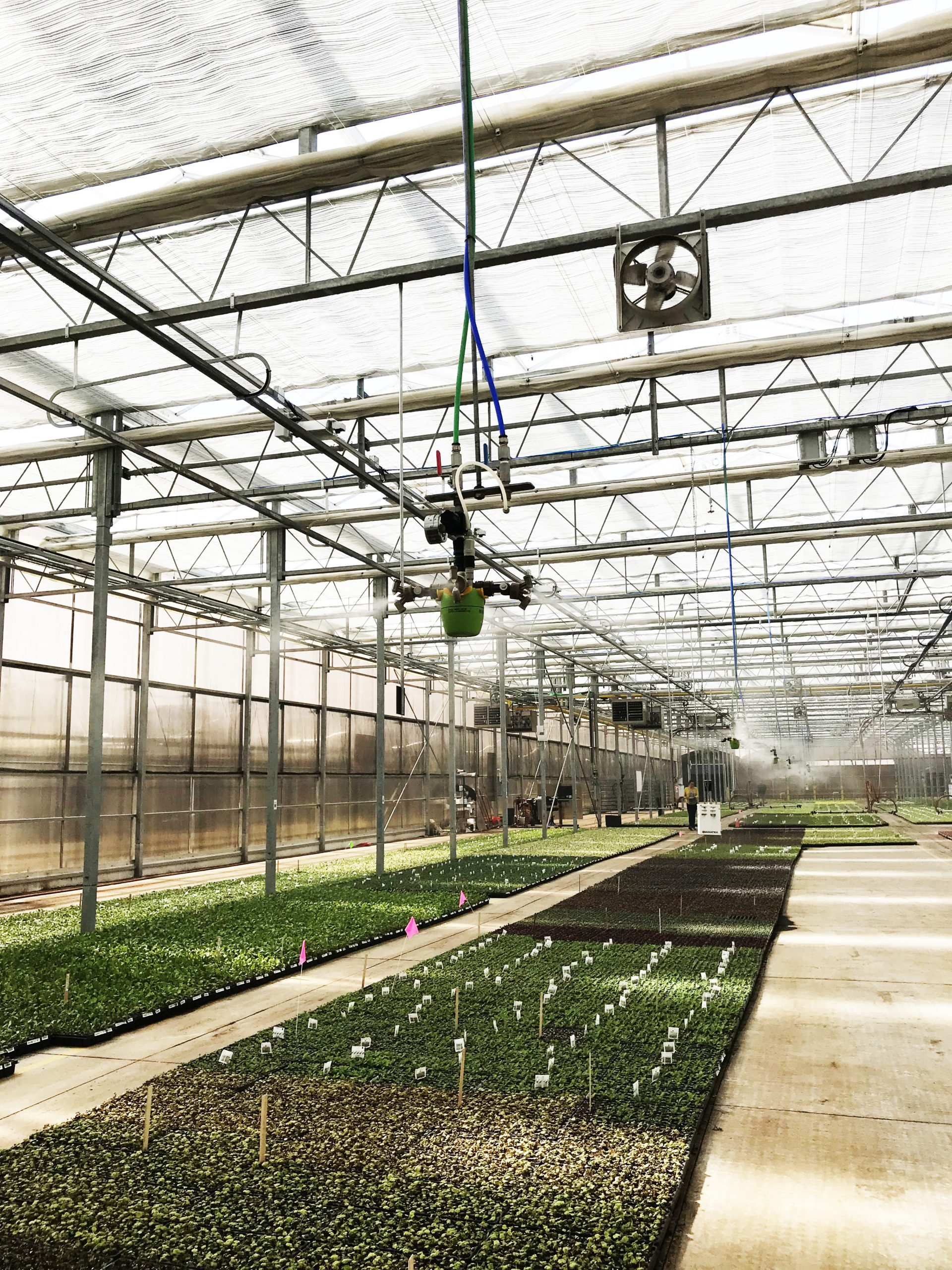 humidity control in greenhouse
